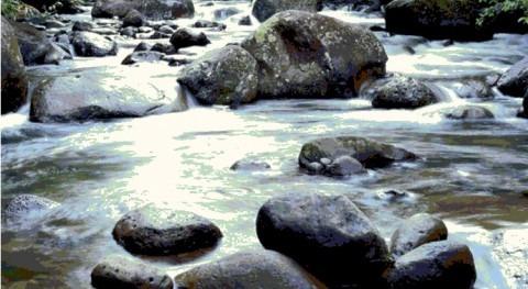 Interpretación análisis agua riego