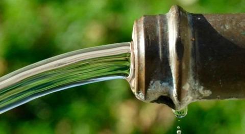 cáncer colorrectal y ingesta nitrato agua están relacionados