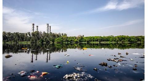 combinación algas y bacterias podría descontaminar aguas residuales y producir hidrógeno