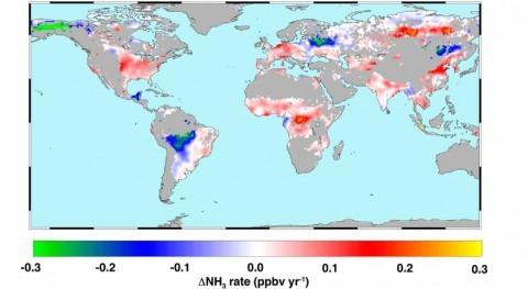 Identificados puntos calientes globales contaminación amoniaco