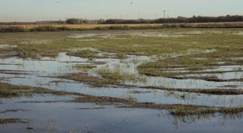 agua vuelve al Tancat Ratlla Albufera