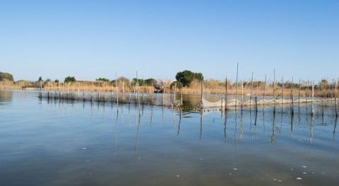 Valencia llevará cabo mayor actuación dragado canales desagüe l'Albufera