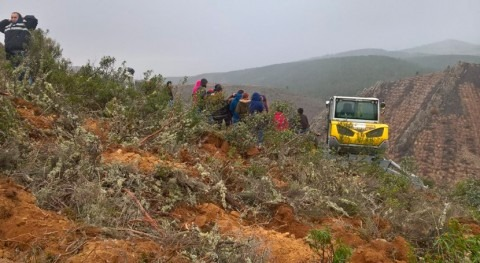 CHT acaba primera fase proyecto restauración laderas monte Alcorlo