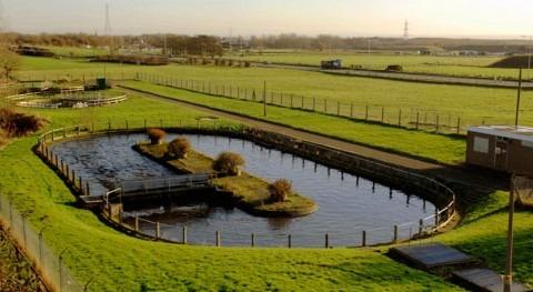 Projar Group se alía Acondaqua ampliar línea negocio aguas