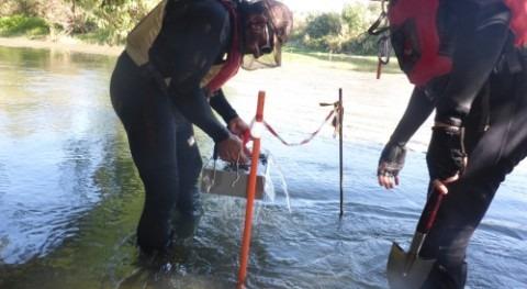 CHE inicia segunda campaña muestreos almeja asiática afluentes principales Ebro