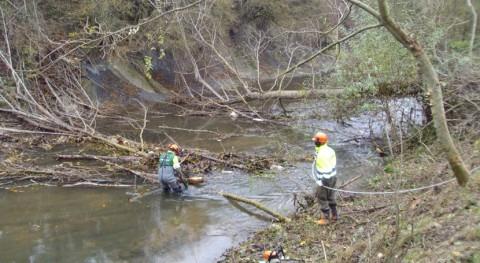Finalizadas 10 actuaciones mejorar capacidad desagüe ríos Navarra