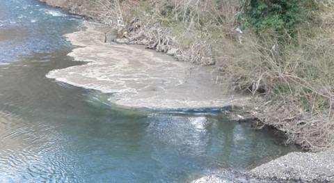 vertido detectado ayer río Deba, Elgoibar, se debe imprevisto depuradora