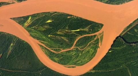 Estrategia Bioma Amazónico: Amazonía se sustenta futuro