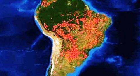 Incendio forestal Brasil y necesidad economía verde América Sur