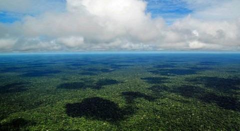 Incendios Amazonas: ¿ qué arde lugares más húmedos planeta?