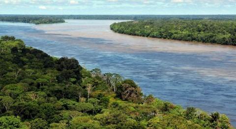 aumento emisiones secará Amazonia y hará más húmedos bosques África e Indonesia
