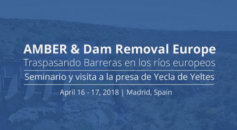 Seminario AMBER y Dam Removal Europe: Traspasando Barreras ríos europeos