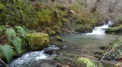 URA licita acondicionamiento hidráulico tramo arroyo Amunategi Axpe-Busturia