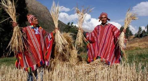 Meteorólogos, Yachachiqs y cabañuelas: revalorizando conocimiento ancestral Andes