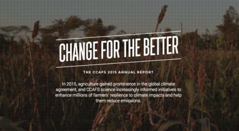 Creando impacto global resultados locales: aspectos destacados nuestro informe anual