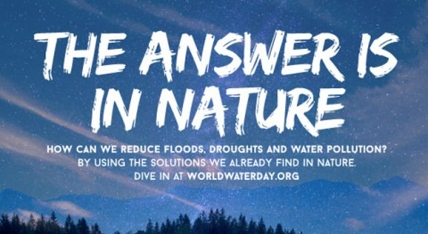 Soluciones Basadas Naturaleza