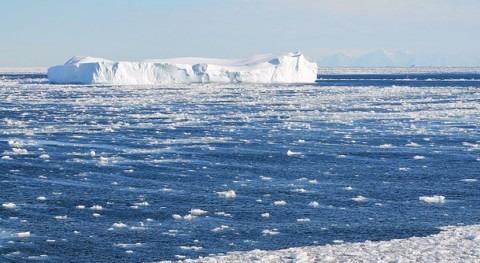 equipo investigación estudia cambios ecosistemas marinos antárticos
