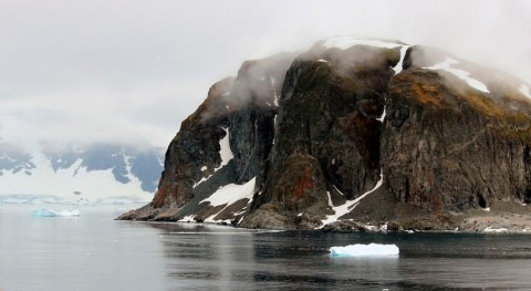 cambio climático provoca crecimiento bancos musgo Antártida