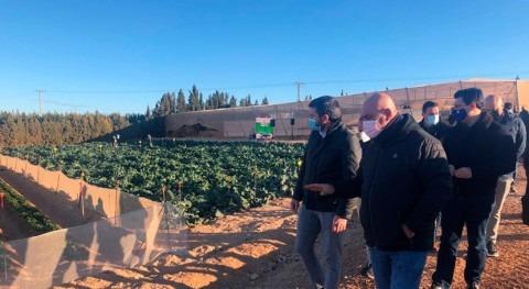 agricultura Campo Cartagena invierte tecnología que garantice uso óptimo agua