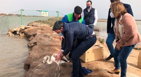 Murcia destina casi 1,8 millones euros preservar y poner valor humedales durante 2021