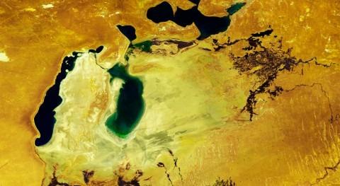 cuarto lago más grande Tierra, escenario grave desastre ecológico