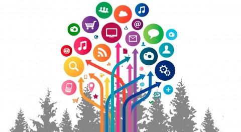 Que árboles digitales no nos impidan ver bosque