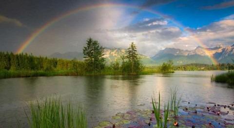 ¿ qué derecho humano medio ambiente sano debe ser reconocido?