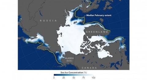 hielo ártico, mínimos invernales debido eventos calentamiento frecuentes