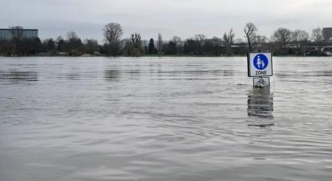 ¿ qué Alemania no estaba preparada graves inundaciones cuenca Rin?