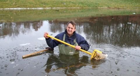 Humedales tratamiento aguas residuales: más preguntas y más respuestas (II)