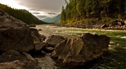 contaminación agua podría ser principales causas muerte 2050