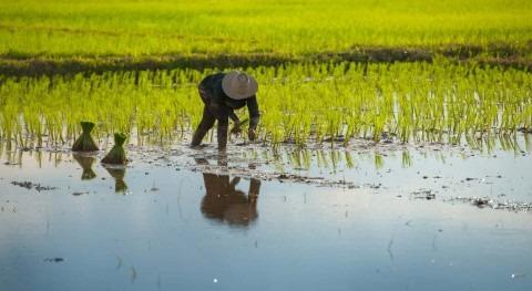 iAgua se vuelca Día Mundial Agua
