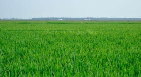 ¿Cómo abordar retos ecológicos y sociales gestión agua?