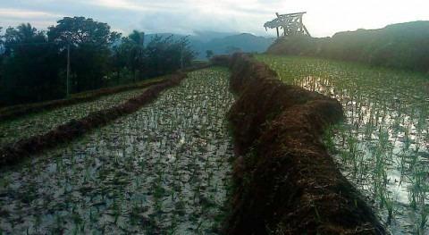 temporal lluvias Indonesia deja 68 fallecidos y miles desplazados