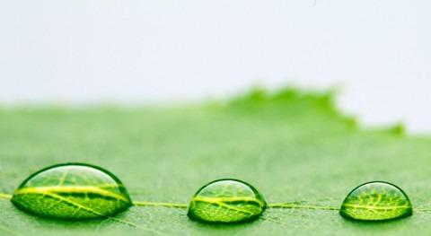 ¿Cómo mejorar comunicación uso agua sector agro?