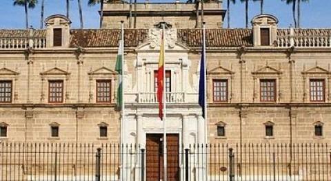 """ASA-Andalucía defiende """"despolitización"""" consejos administración operadores"""