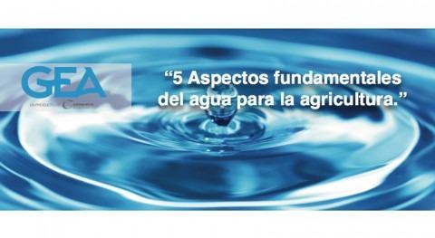 5 aspectos fundamentales agua agricultura
