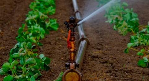 Norma ISO 16.075: gestión riesgo reutilización aguas agricultura