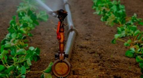 Científicos México y Reino Unido optimizarán uso agua sector agrícola