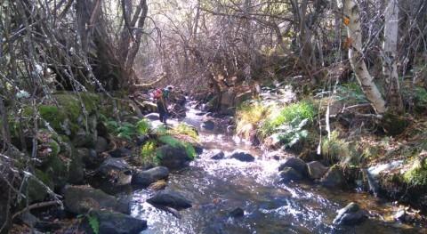 Impulso protección hábitat desmán ibérico Ávila