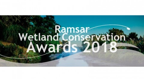 Ramsar otorga premios conservación humedales 2018