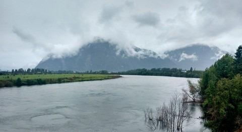 aguas regiones Lagos y Aysén experimentan floraciones nocivas
