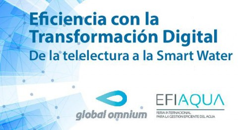 Eficiencia Transformación Digital. Telelectura Smart Water