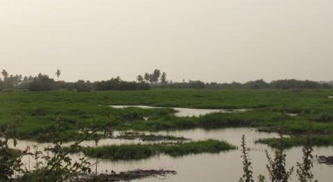 Benín amplía superficie dos sitios Ramsar abarcar todo litoral