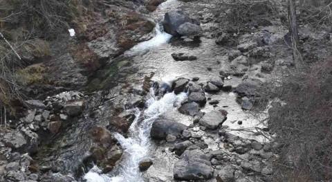 CHE adjudica proyecto acondicionamiento río Cinca, Bielsa, Huesca