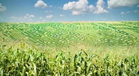 10 empleos digitales más demandados agricultura regadío