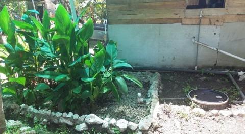 jardín mi casa es mi depuradora: biojardineras