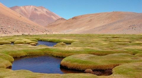 Chile podrá establecer caudal mínimo ecológico ecosistemas amenazados o degradados