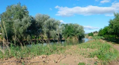 centros educativos Murcia impartirán talleres bosque ribera 2019