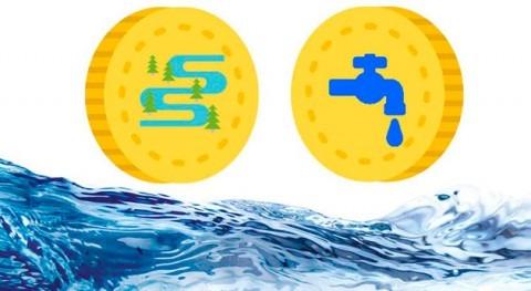 bosque ribera y beneficios ciclo agua: dos caras misma moneda
